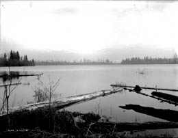 Swan Lake around 1915