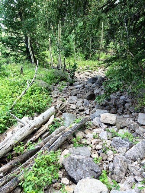 Did I mention there were rocky trails? - Mark Kreuzer photo