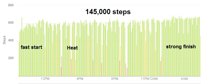 Fitbit record